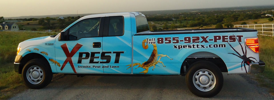 XPest animal removal rodent proofing truck